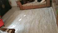 ניקוי שטיח שאגי