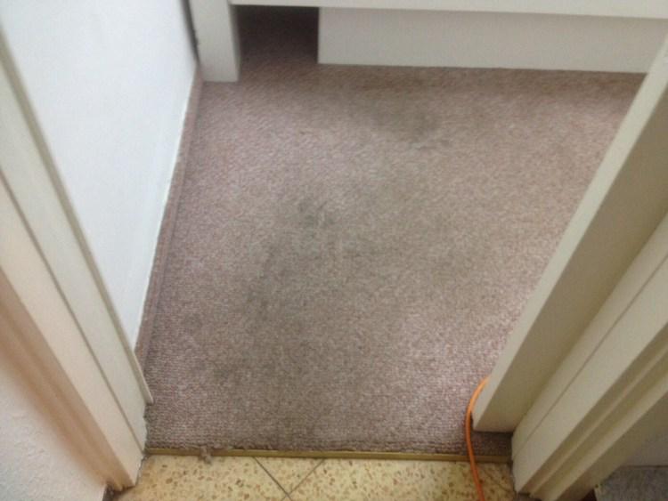 שטיח קיר לקיר בהיר לפני ניקוי