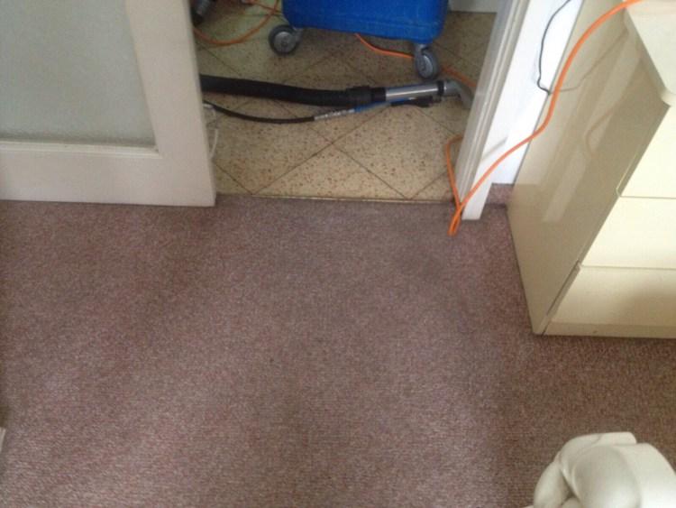 שטיח קיר לקיר בהיר אחרי ניקוי